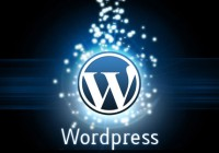 Setting WordPress to Auto Update via Wp-config